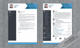 CEO Michael Resume and cover sample